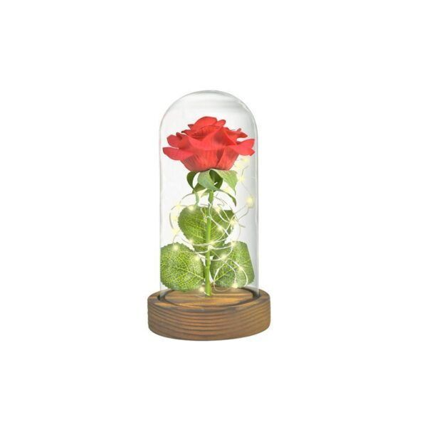 Eternal Rose Glass Dome1.jpg