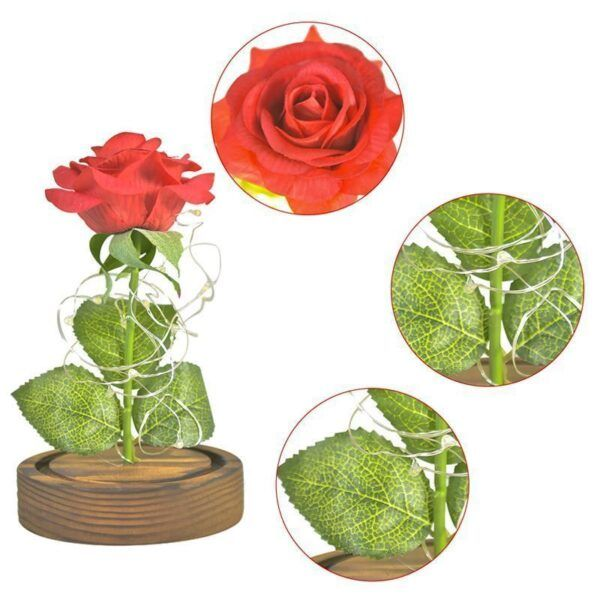 Eternal Rose Glass Dome16.jpg