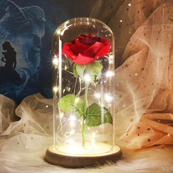 Eternal Rose Glass Dome2.jpg